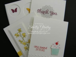 Quick Clean & Classy Cards Class Web