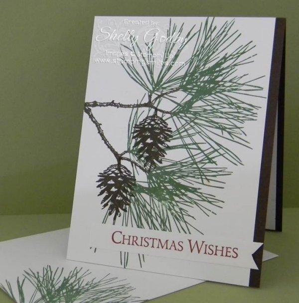 Ornamental Pine Card